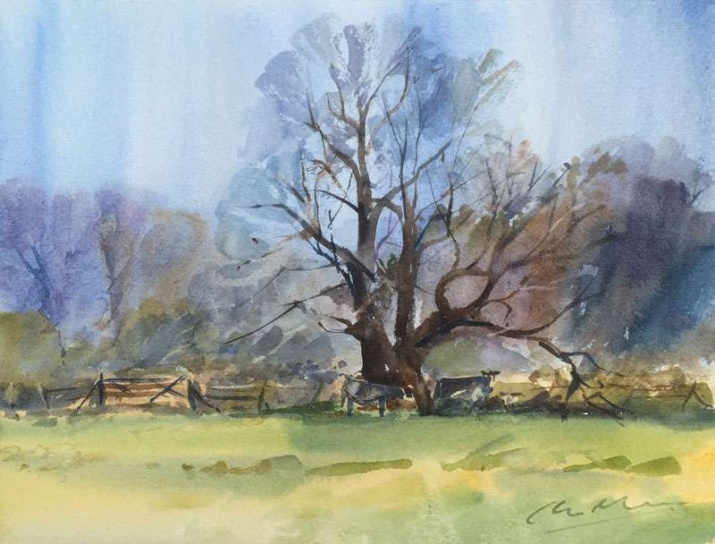Watercolour Oak tree and meadow in Sussex